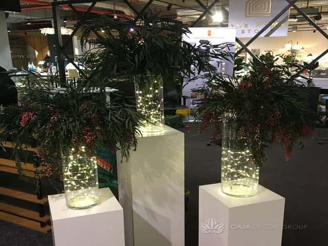 Decoration of stabilized plants