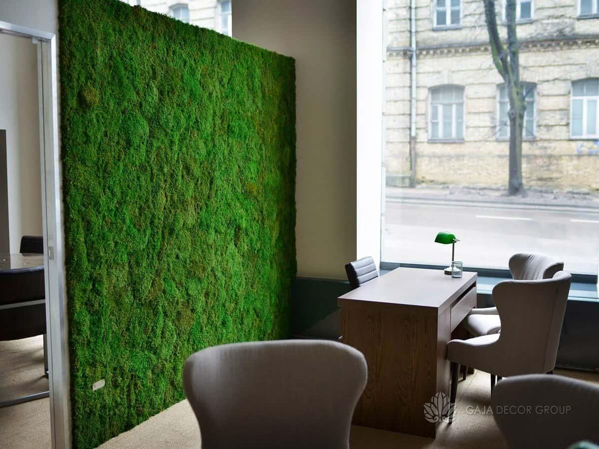 green wall office wood flat moss office design walls gaja decor group
