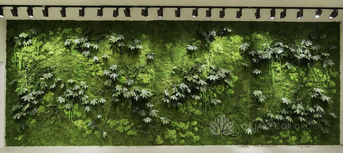 Large wall of forest plants