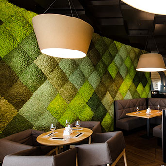 Green Scandinavian wall composition on wall
