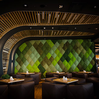 Scandinavian moss wall in the restaurant