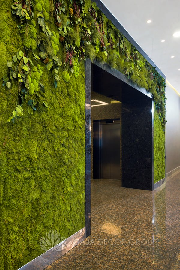 Wall of plants and moss design