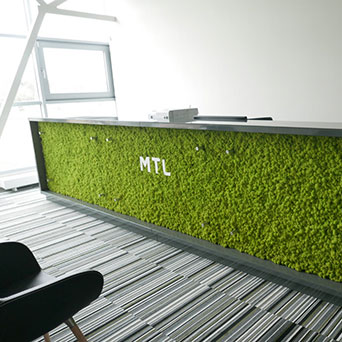 Wall of plants built-in furniture